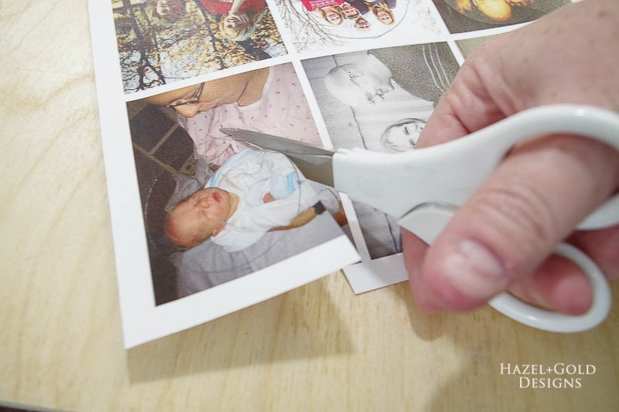 how to make photo magnets with resin - cut the photo circles out